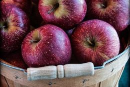 b_260_260_16777215_00_images_apple.JPG